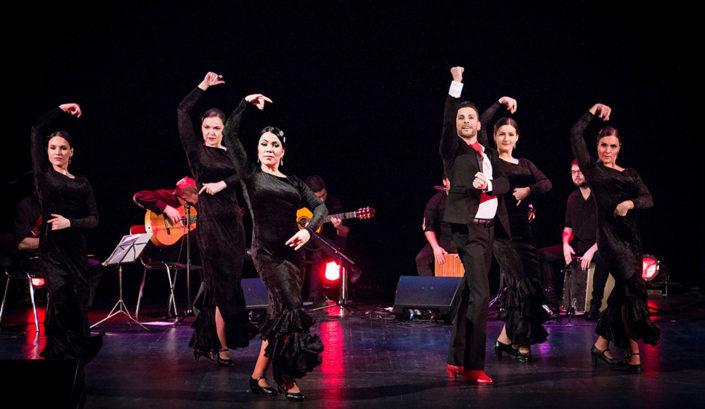 Etendus-Ivan-Gallego&Arte-Flamenco-Iberofest-2018-bulerias