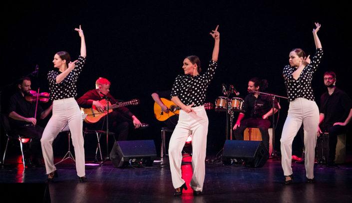 Etendus-Ivan-Gallego&Arte-Flamenco-Iberofest-2018-farruca